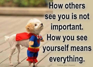 dogs---how-others-see-you